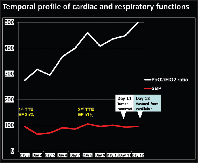 Figure 2: Time course of systolic blood pressure, systolic function, and PaO2/FiO2 ratio showing severe cardiopulmonary depression on hospitalization day 3. By hospitalization day 8, cardiopulmonary function recovered substantially