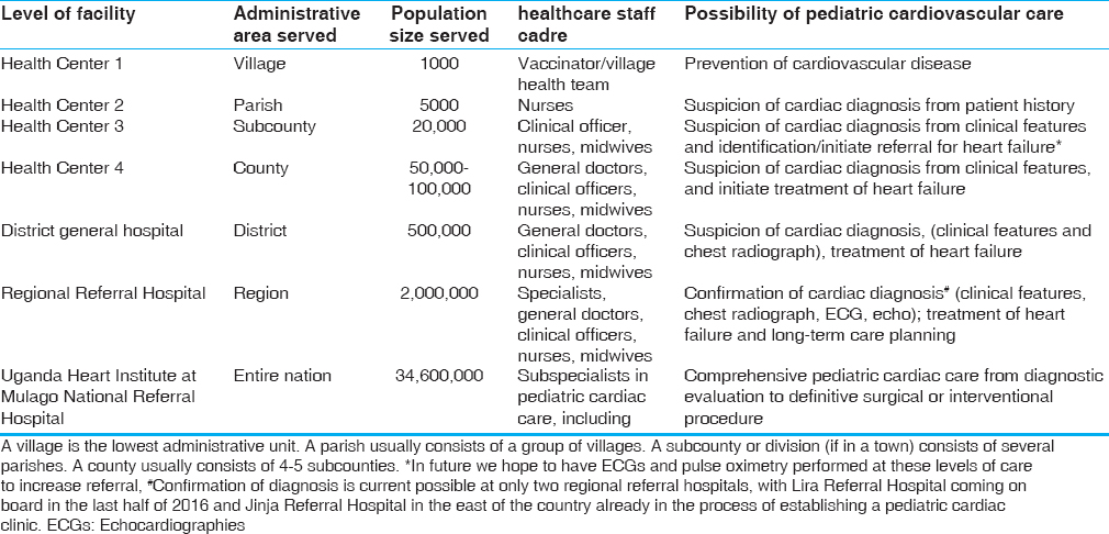 Table 1: The different health care levels in the country and the possibility of pediatric cardiovascular care in them